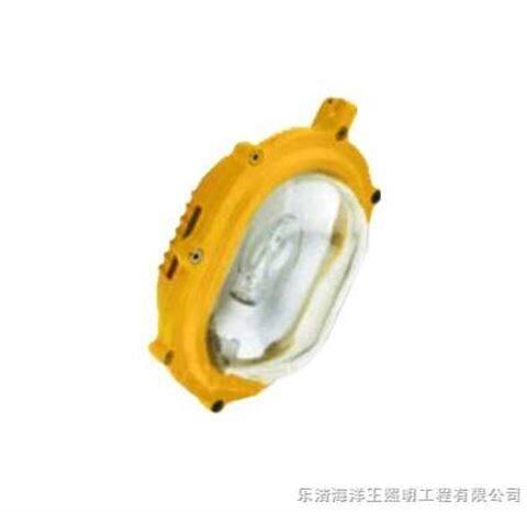 BFE8120海洋王防爆燈BFc8120,北京
